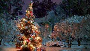 19.12.2008 - Weihnachtsfeier im Holzbachtal