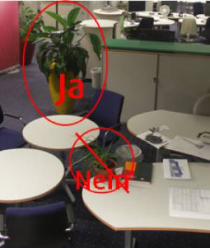 Pflanzen und Wasserobjekte für vitalisierende Büroräume